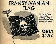Transylvanian Flag