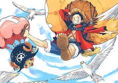 Luffy Chopper