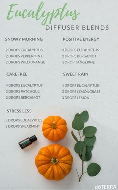 Eucalyptus Diffuser Blends
