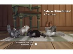 Deco Chinchillas