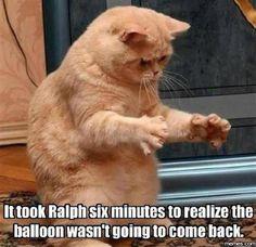 Where ma balloon?