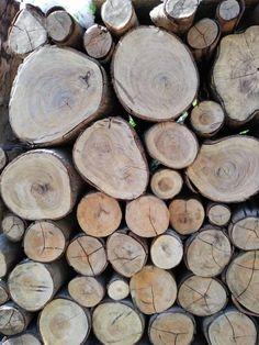 cutting log background