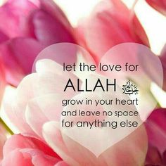 Let the love for allah grow in your heart! al- qur'an allah Islamic Qoutes, Islamic Images, Islamic Inspirational Quotes, Muslim Quotes, Islamic Pictures, Hindi Quotes, Inspiring Quotes, Islamic Messages, Nice Quotes