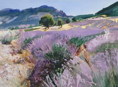 Bob Rudd - Lavender near St Jaile, Provence