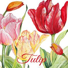 Flower Painting - Tulip-jp2584 by Jean Plout