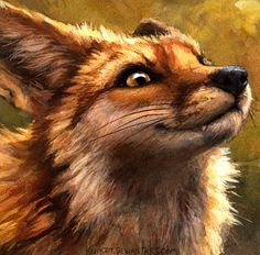 I'm a Fox and You Are Not - by Kenket suck it #smug #bastard                                                                                                                                                      More