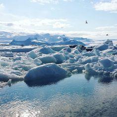 Van het strand naar grootse ijsschotspraktijken #jökulsárlón #iceland by toloveandlogic