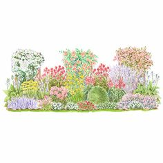 Many bees and butterflies enjoy fragrant flowers as much as we do. This plan includes favorites such as dianthus, phlox, and nicotiana. Garden size: 22 by 6 feet.
