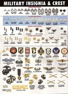 Displaying the insignia of ranks in the United States armed forces who fought is World War Private to Brigadier General. It also shows the badges and pins of different companies within the armed forces, each company had a different role during World War Military Ranks, Military Insignia, Military Weapons, Military Life, Military History, Military Vehicles, Military Uniforms, Army Ranks, Army Uniform