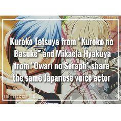 Anime Facts - Kuroko no Basket and Owari no Seraph {Seraph of the End} Anime Boys, Manga Boy, All Anime, Anime Stuff, Mikaela Hyakuya, Anime Rules, Kuroko Tetsuya, Seraph Of The End, Anime Crossover