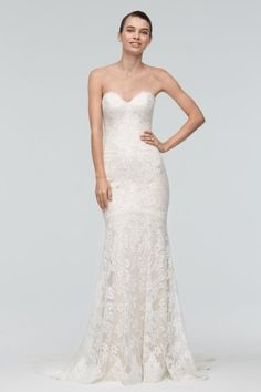 Watters Brides Joan Gown Style 9018B in ballerina lace