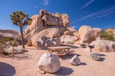 Belle Campground, Joshua Tree National Park