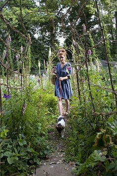 Like this idea of a walkway and Alys Fowler's allotment looks amazing!