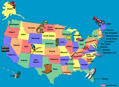 Map Of The Fifty States Of The United States Can Be Used For So Many Math