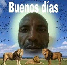 Memes Estúpidos, Stupid Memes, Stupid Funny, Hilarious, Funny Reaction Pictures, Funny Pictures, Spanish Memes, Oui Oui, Meme Faces