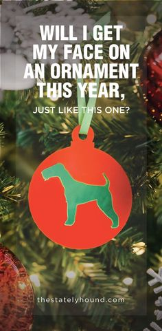 Make Christmas extra special this year and totally dog centric - as is most of our life. We've designed a set of bauble tree decorations that will bring the magic and cheer of the holiday season to any dog lover's home. From our Welsh Terrier designs to our French Bulldogs, we think you'd find that there's plenty of breeds to choose from for you to deck the halls.  Don't see the design you're after? Let us know and we will see if we can create it.  #dogs #christmas #doggifts #doginspired Dog Dad Gifts, Dog Lover Gifts, Gifts For Dad, Dog Lovers, Pet Name Tags, Dog Id Tags, Welsh Terrier, Leather Dog Collars, Pet Names