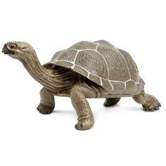 Tortoise Large Incredible Creatures Figure Safari Ltd