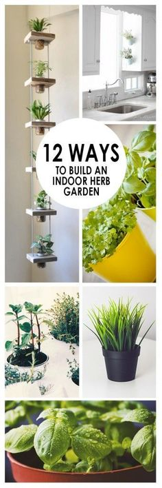 - 12 Ways to Build an Indoor Herb Garden /selfsufficientdreams A collection of articles on Off Grid Living/Solar/Wind/Hydro Power/Wild Foraging & More! Like minded folks learning from each other. Indoor Vegetable Gardening, Hydroponic Gardening, Container Gardening, Organic Gardening, Gardening Tips, Herb Garden Indoor, Vertical Herb Gardens, Balcony Gardening, Gardening Zones