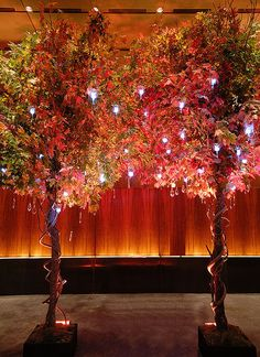 Installations for Autumnal Reception | Inspirations