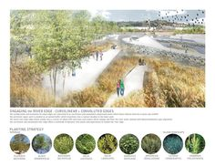 29 ideas for landscape architecture perspective rendering projects Landscape Diagram, Urban Landscape, Landscape Design, Landscaping Supplies, Landscaping Plants, Landscape Architecture Perspective, Design Presentation, Presentation Boards, Plant Information