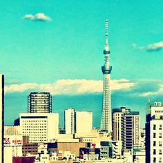 TRANS ARTS TOKYO