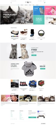 Pet Shop Responsive Shopify Theme #63802