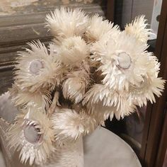 #eclectic #flower #shape #white #natural