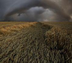 Path of a tornado. Taken by Franz Schumacher