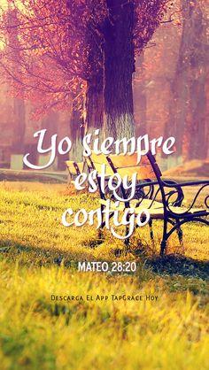Yo siempre estoy contigo Mateo 28:20