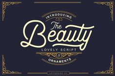 The Beauty Script & Ornaments Fonts **Hi everyone ! Welcome to my Shop. Thank You very much for downloading this Font and I hope you enj by Lettersiro Co.