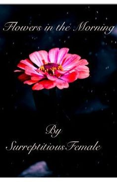 Flowers in the Morning - Chapter Three ~ Silent Words - SurreptitiousFemale