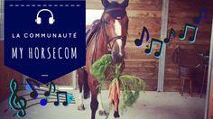 My Horsecom la communauté de la 5ème aide naturelle en équitation.