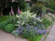 Plant a hellstrip garden between the sidewalk and street.: Sidewalk Flower Garden Design