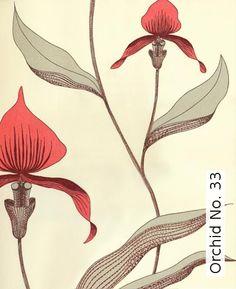 Tapete: Orchid No. 33 - TapetenAgentur