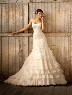 Royal Organza and Lace Fit and Flare Wedding Dress by charmaine