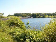 Rivière de Pont-l'Abbé : le barrage et l'étang du Moulin Neuf en amont de Pont-l'Abbé (limite communale entre Plonéour-Lanvern et Tréméoc). Le plan d'eau du Moulin Neuf sert de réservoir d'eau potable pour une bonne partie du Pays bigouden