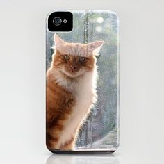 Ginger Cat  waiting by the window  (CW004) iPhone Case by bellpics - $35.00