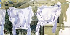 The Whites - Shari Blaukopf - The Sketchbook - A different drawing every day