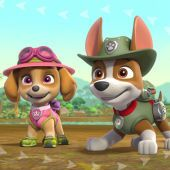 Join Tracker, Rubble, Marshall, and the pups in the jungle as they help Mayor Goodway and Chickaletta find a new home for the mayor's plant in this video.