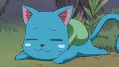 Carla Fairy Tail, Fairy Tail Cat, Fairy Tail Happy, Fairy Tail Love, Fairy Tail Manga, Anime Fairy, Inuyasha, Fairy Tail Pictures, Naruto