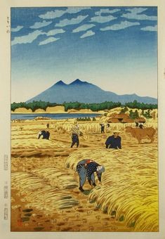 Kasamatsu Shiro > Rice Harvesting