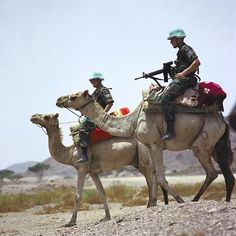 Dutch UN soldiers riding camels during the United Nations Mission in Ethiopia and Eritrea [584584]
