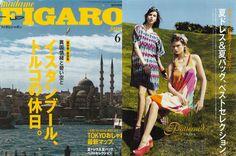 Madame Figaro Japan June 2013
