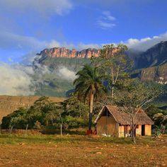 Excelente inicio de semana! Fotografía de La Gran Sabana cortesía de @icugueto  #LacuadraU #GaleriaLCU #Venezuela #Nature #Naturaleza #Venezuela #VenezuelaNatural #Paisajes #IgersVenezuela #igersvzla