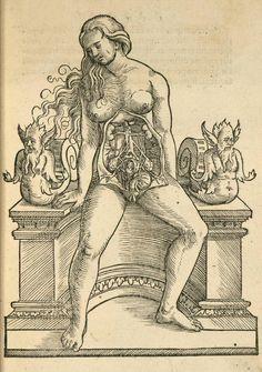 Jacob Rueff  | De conceptu et generatione hominis, 1554