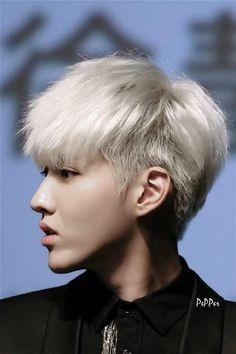 Kris Kris Exo, Tao Exo, Zi Tao, Chanyeol, Exo Facts, Wu Yi Fan, Kim Minseok, Chinese Boy, Yixing