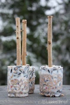 Feed the birds. Love this idea! Why not make them tomorrow to entice more birds into your garden for a this weekend! Bird Seed Feeders, Bird House Feeder, Diy Bird Feeder, Homemade Bird Houses, Bird House Kits, How To Attract Birds, Bird Food, Backyard Birds, Backyard Ideas