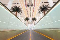 UAE, United Arab Emirates, Dubai, Dubai International Airport, Terminal 3, Moving walkway in the new Arrivals Hall by Gavin Hellier
