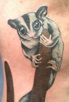 Australian sugar glider (petaurus breviceps) tattoo