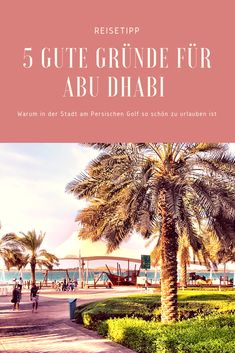 Why travel to Abu Dhabi? In Dubai, Abu Dhabi, Dubai Vacation, Holiday Destinations, Exotic Cars, Travel Inspiration, Explore, World, Beach